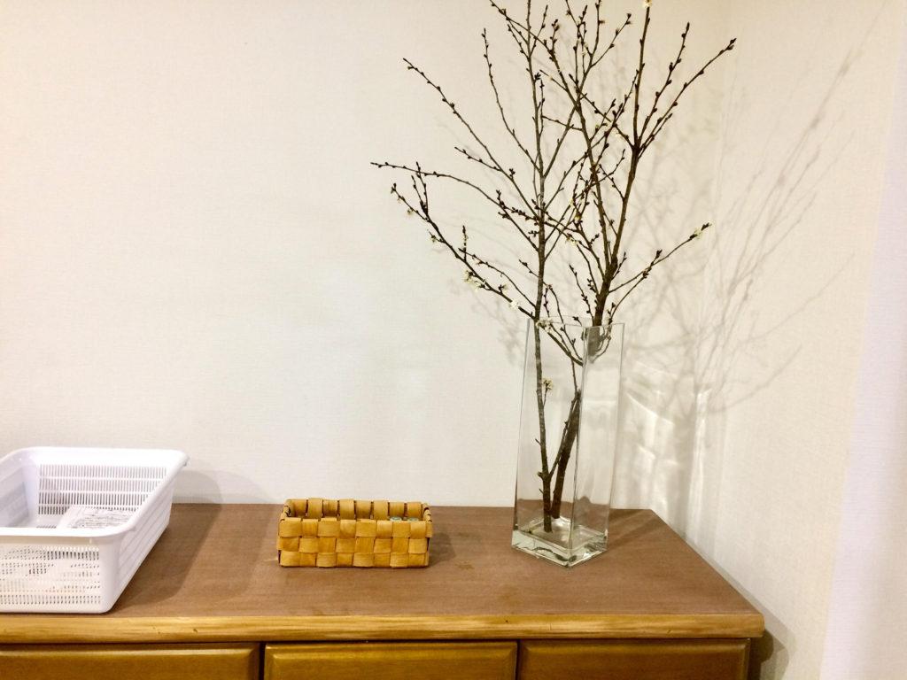 ニトリの大きな花瓶に枝物を飾る